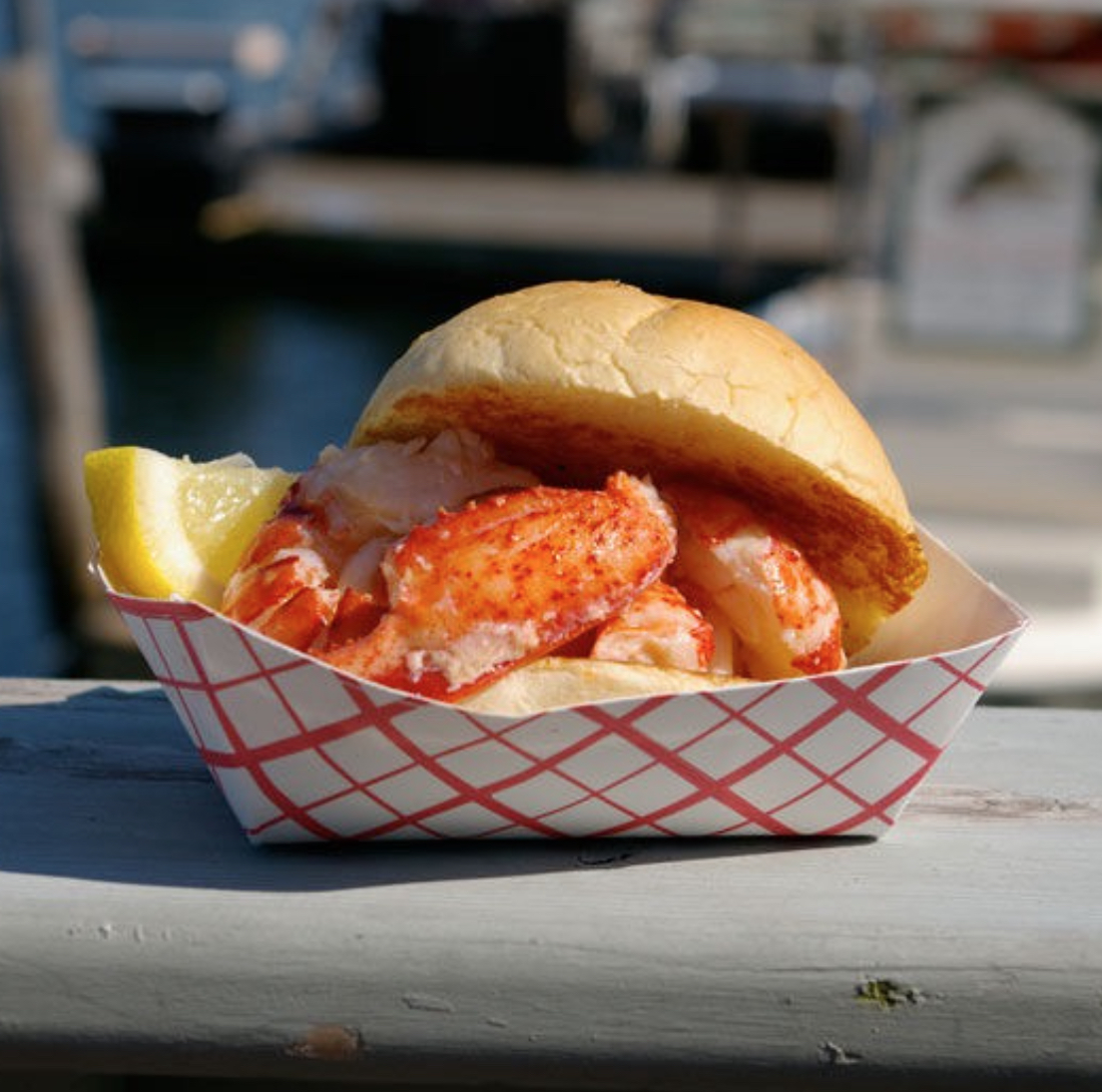 A Great Reason to Choose a Camp in Maine: LOBSTER